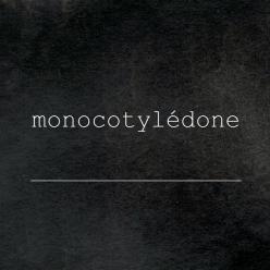 logo - monocotylédone